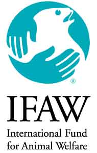 Donate to IFAW (International Fund for Animal Welfare)